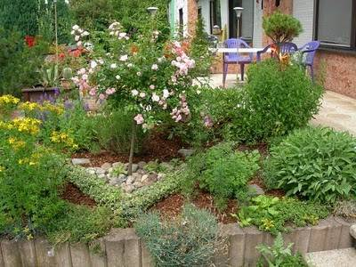 decorative-herb-garden