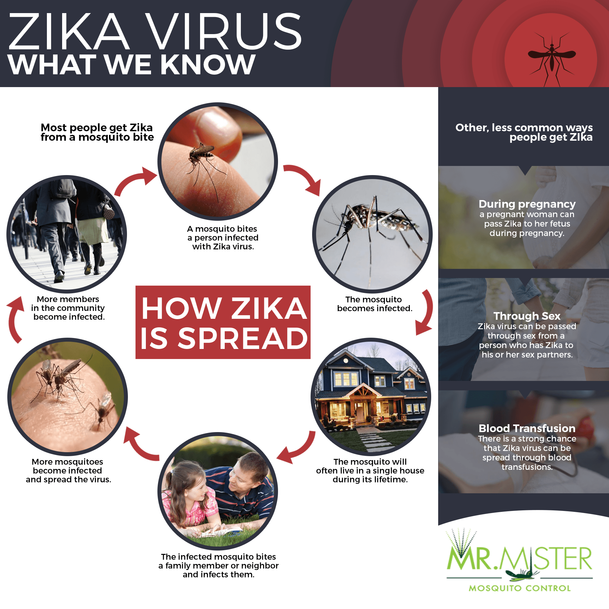 how-zika-spread