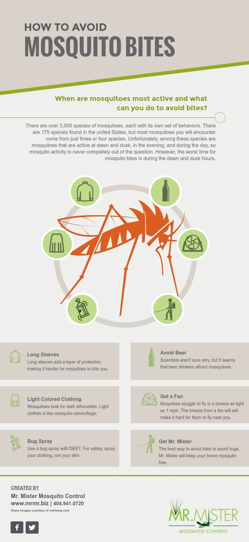 When Are Mosquitoes Most Active [infographic]