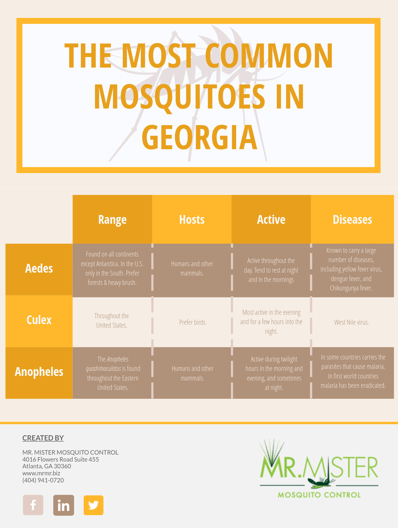 The Most Common Types of Mosquitoes in Georgia [infographic]