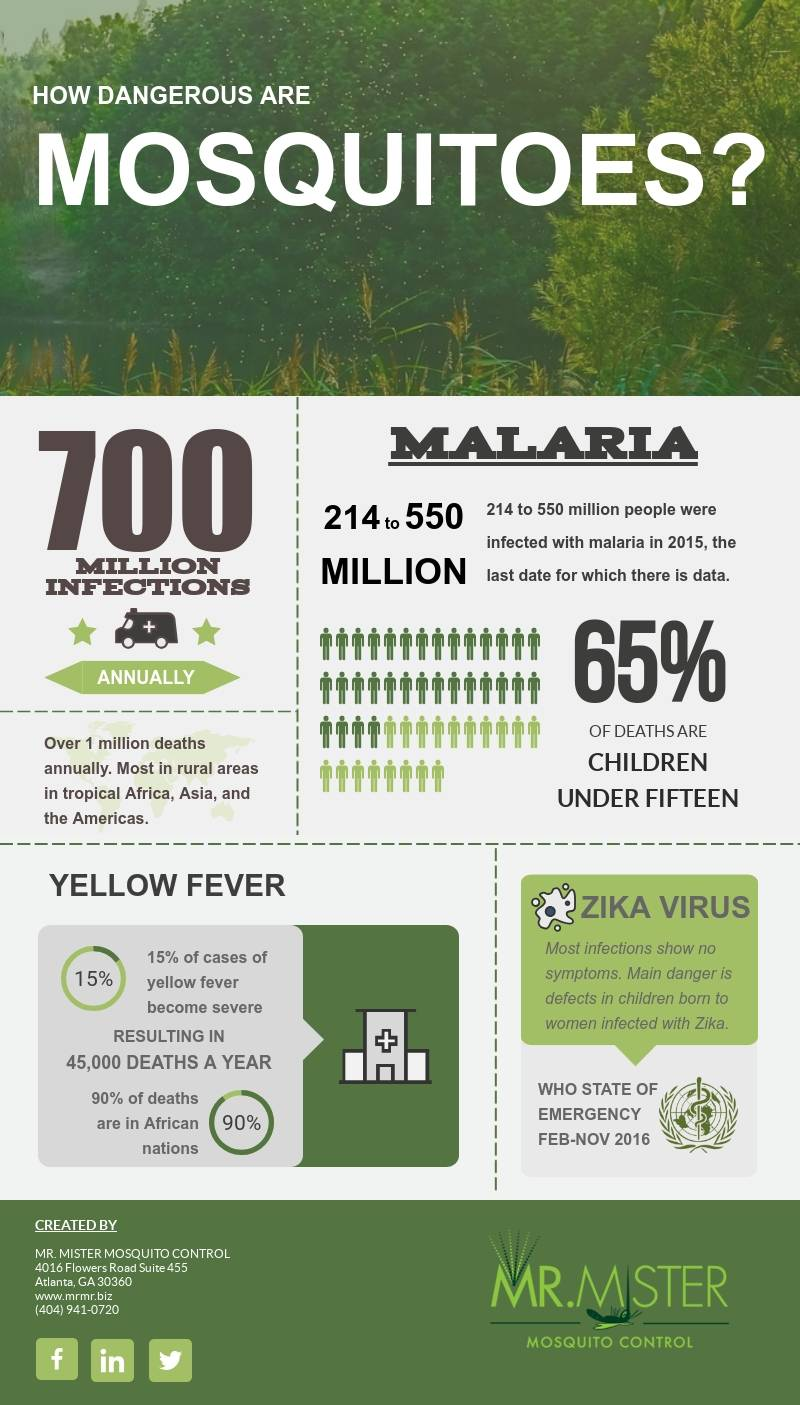 How Dangerous Are Mosquitoes [infographic]