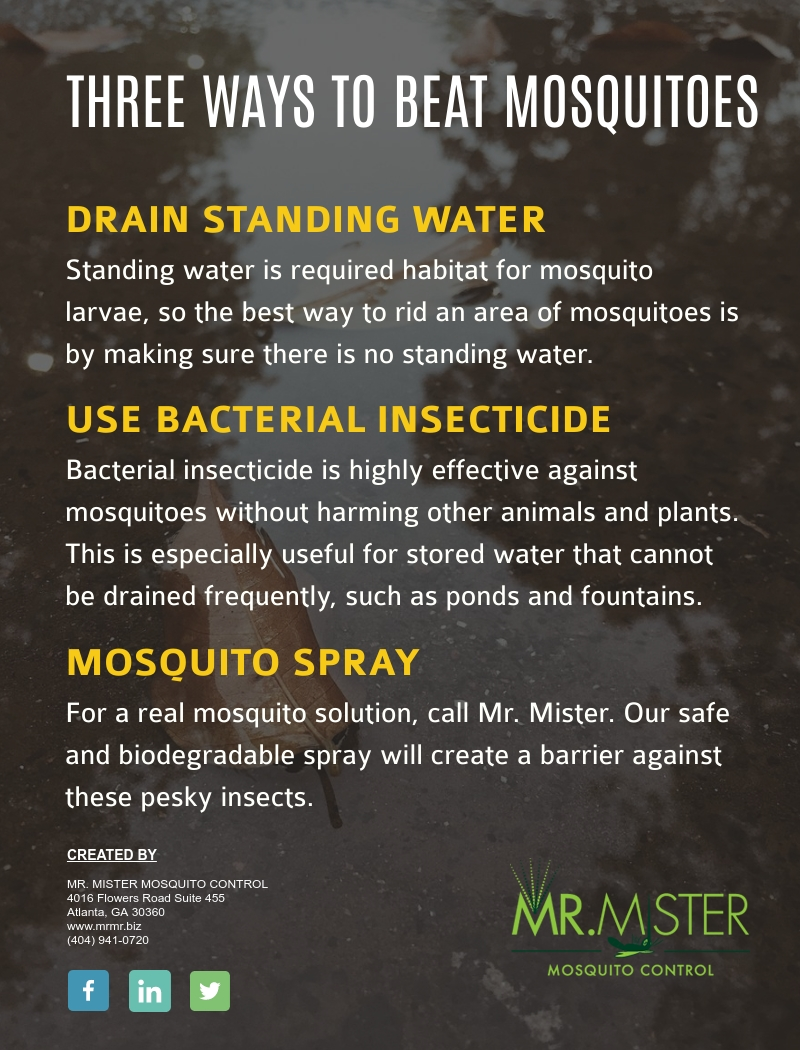 Mosquitoes and Standing Water [infographic]