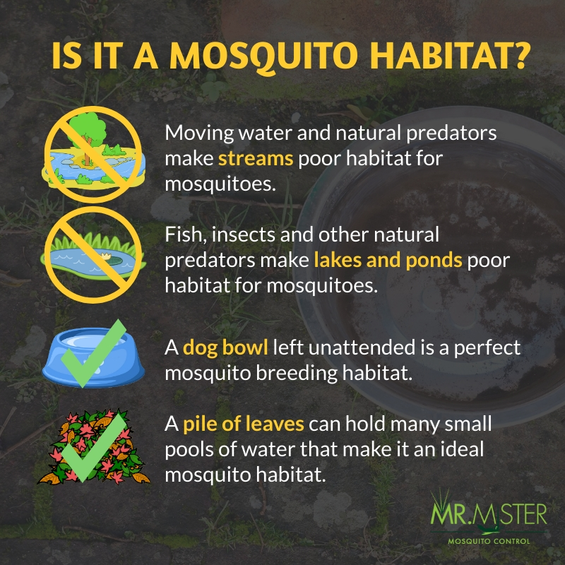 How Knowing a Mosquito's Habitat Can Aid in Mosquito Control [infographic]