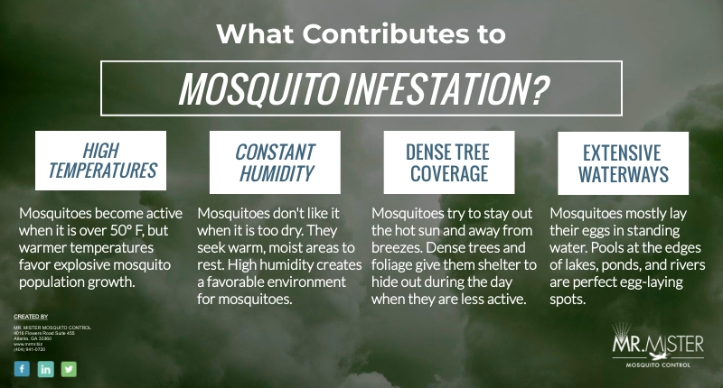 Why You Need Mosquito Protection [infographic]