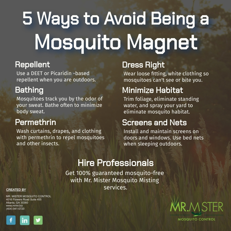 Don't Be a Mosquito Magnet [infographic]